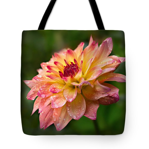 Rainy Dahlia Tote Bag