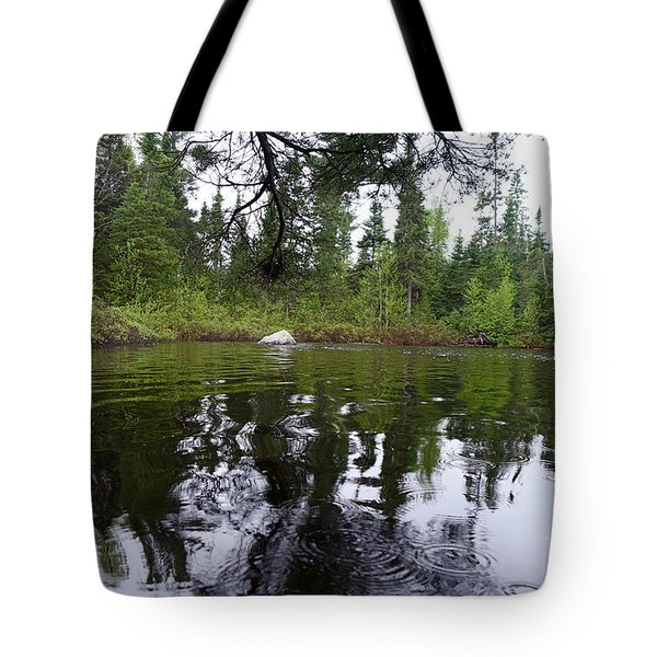 Tote Bag featuring the photograph Rainy Day Beauty by Sandra Updyke
