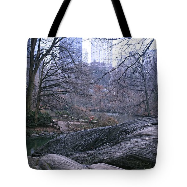 Rainy Day In Central Park Tote Bag by Sandy Moulder