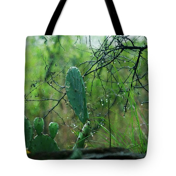 Rainy Day In Central Texas Tote Bag by Travis Burgess