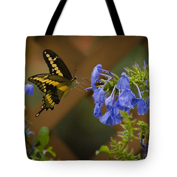 Rainy Day Lunch Tote Bag