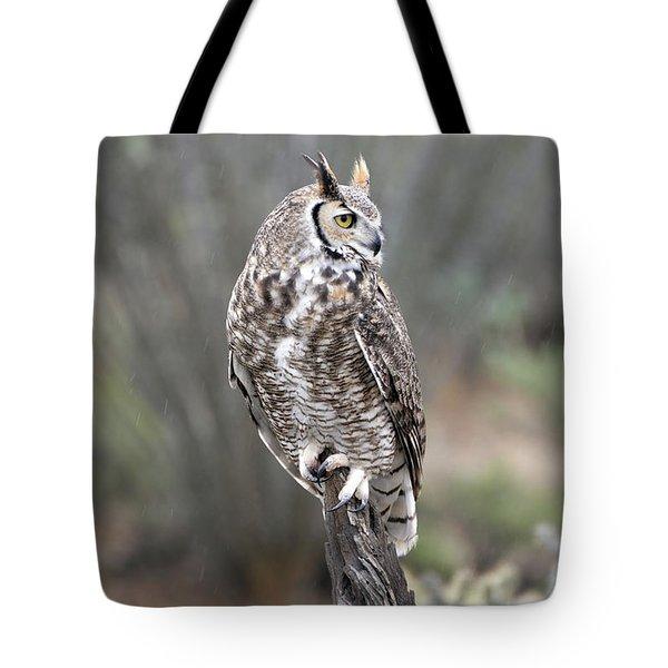 Rainy Day Owl Tote Bag