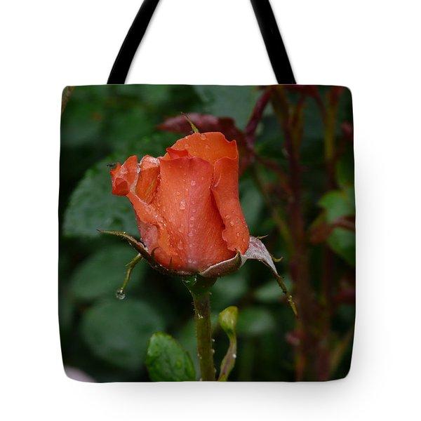 Rainy Rose Bud Tote Bag by Valerie Ornstein