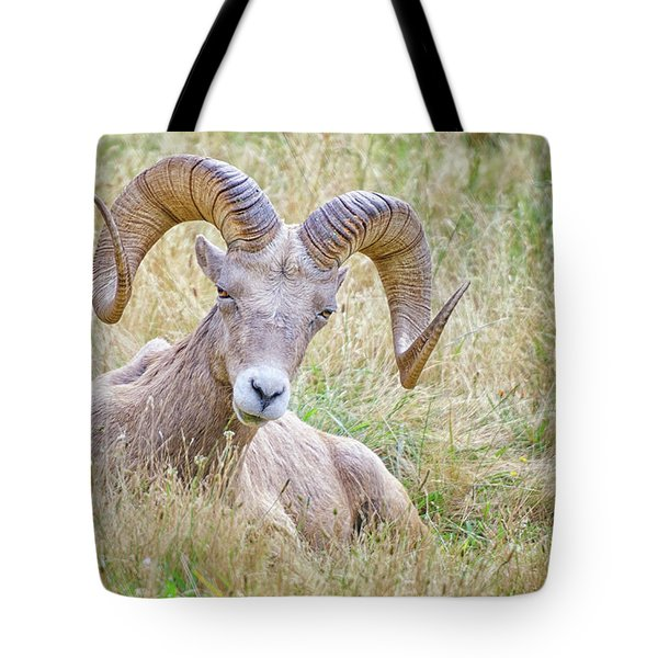 Ram In Field Tote Bag