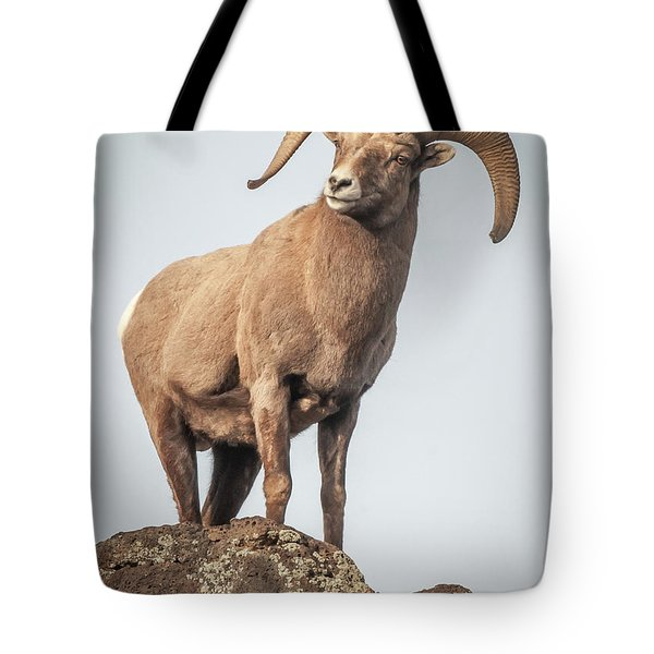 Tote Bag featuring the photograph Ram Of The Rio Grande by Britt Runyon