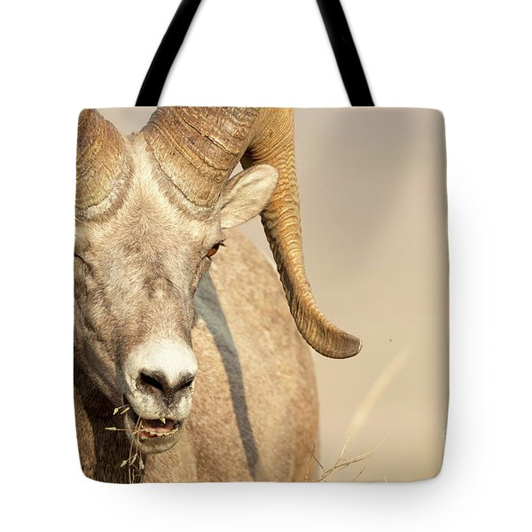 Ram Tough Tote Bag