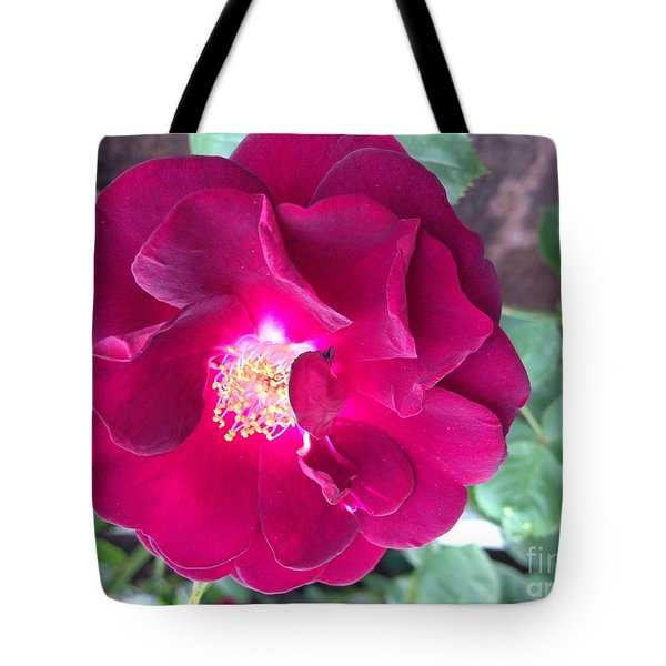 Rambling Rose Tote Bag