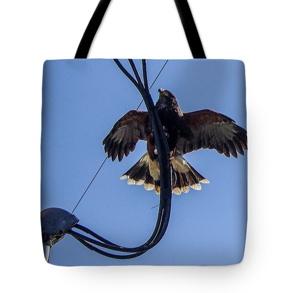 Tote Bag featuring the photograph Ramona Hawk 5 by Phyllis Spoor
