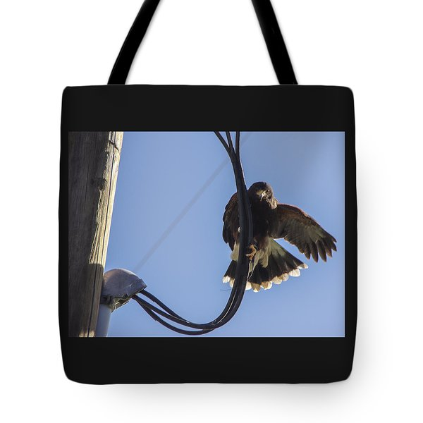 Tote Bag featuring the photograph Ramona Hawk 8 by Phyllis Spoor