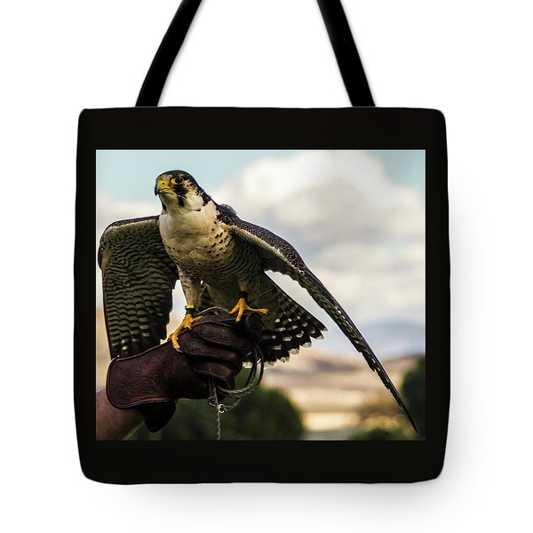 Tote Bag featuring the photograph Ramona Hawk 9 by Phyllis Spoor