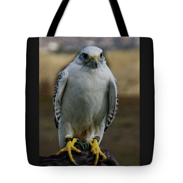 Tote Bag featuring the photograph Ramona Hawk Watch 2 by Phyllis Spoor