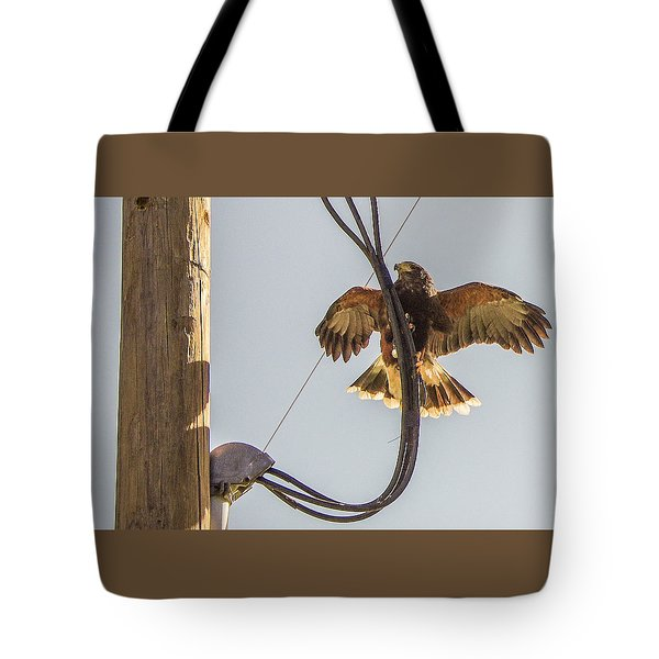 Tote Bag featuring the photograph Ramona Hawk Watch 4 by Phyllis Spoor