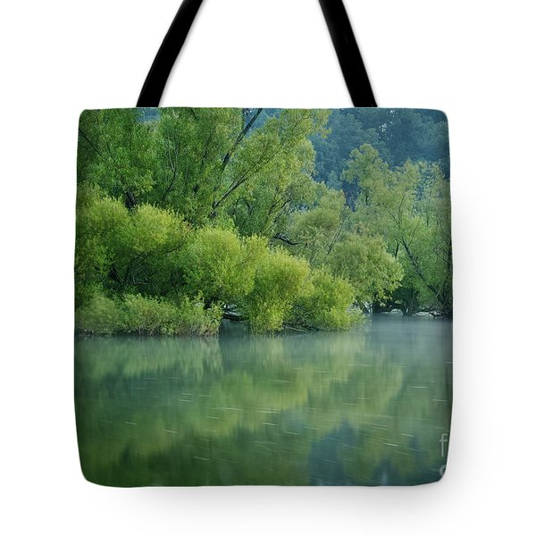 Tote Bag featuring the photograph Rankin Reflections 2 by Douglas Stucky