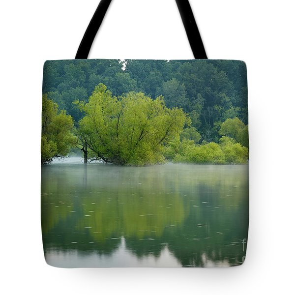 Tote Bag featuring the photograph Rankin Reflections by Douglas Stucky