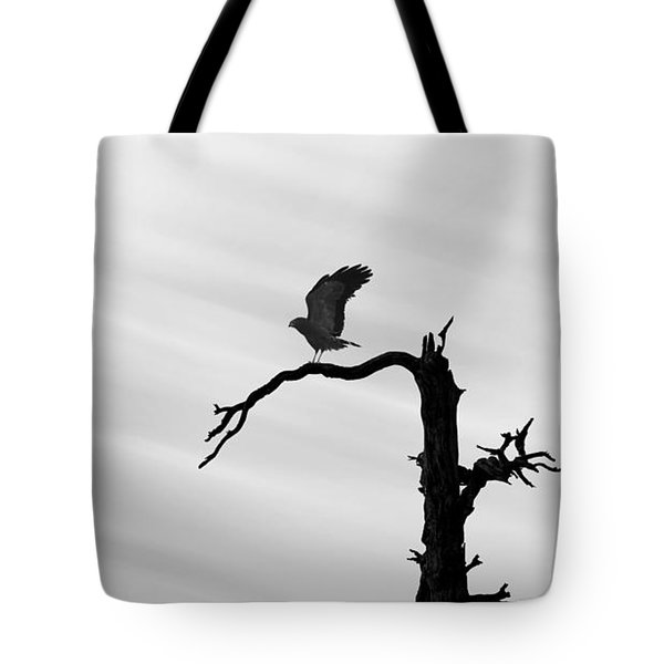 Tote Bag featuring the photograph Raptor Silhouette by Joe Bonita
