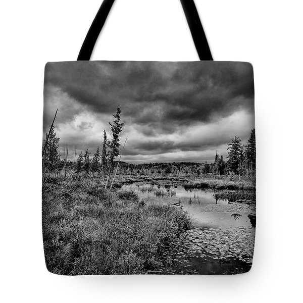 Tote Bag featuring the photograph Raquette Lake Bog by David Patterson