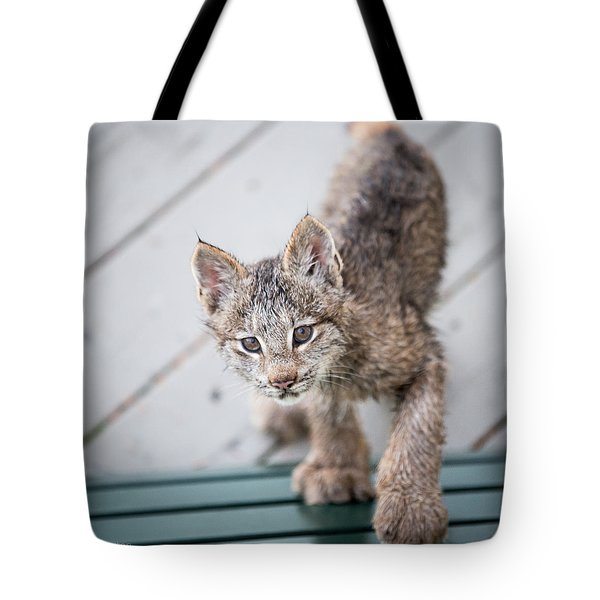 Does Click Mean Edible Tote Bag