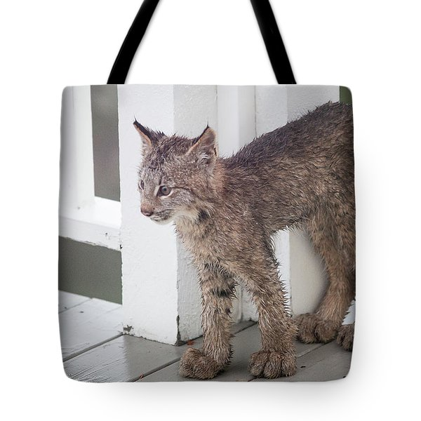 Laser Eyes Big Feet Tote Bag