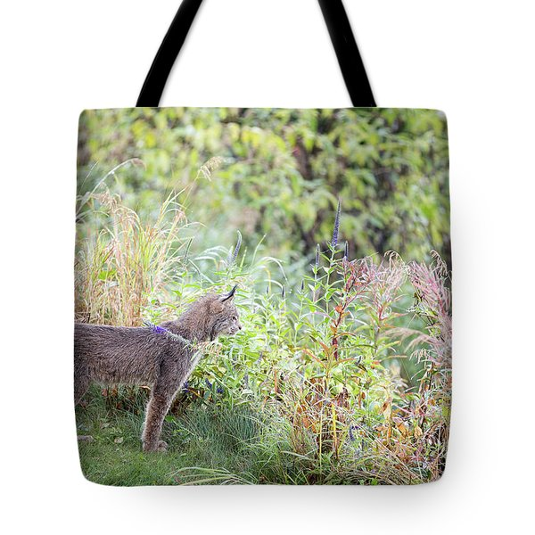 Ever Vigilant Tote Bag