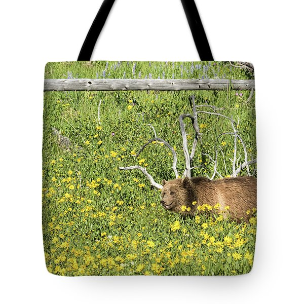 Raspberry, Sow Grizzly Tote Bag