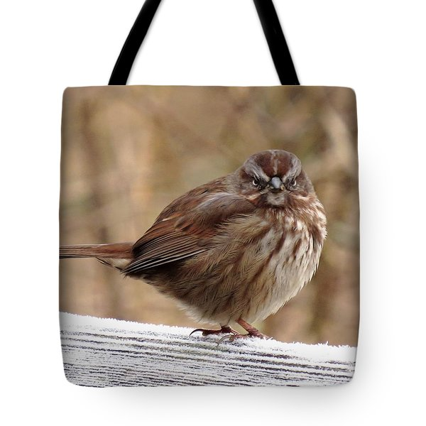 Rats ......it's Monday Morning Tote Bag