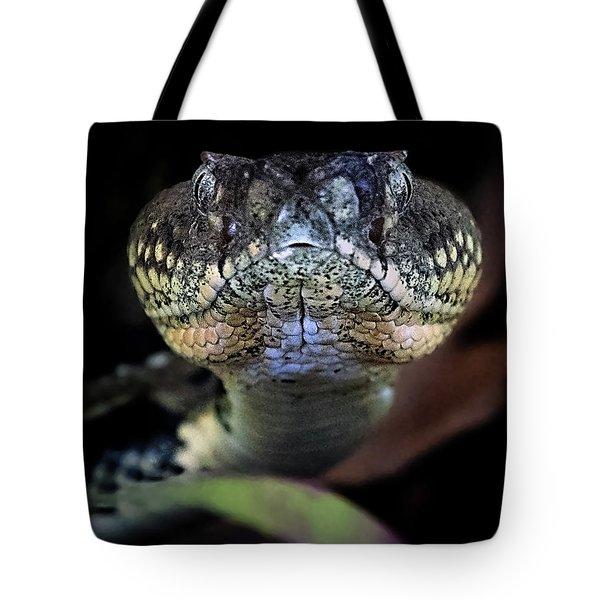 Rattler Eye To Eye Tote Bag