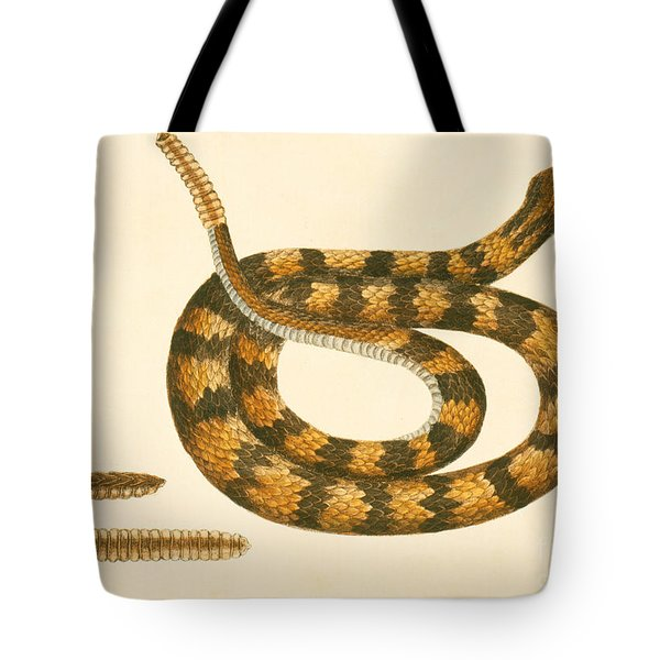 Rattlesnake Tote Bag by Mark Catesby