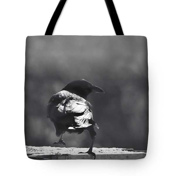 Tote Bag featuring the photograph Raven In The Sun by Susan Capuano