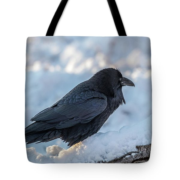 Tote Bag featuring the photograph Raven by Paul Freidlund