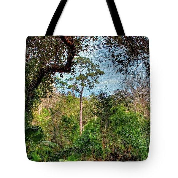 Ravine Gardens State Park In Florida Tote Bag