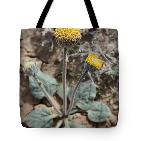 Rayless Daisy Tote Bag by Jenessa Rahn