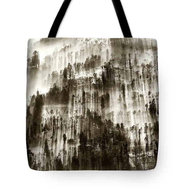 Tote Bag featuring the photograph Rays Of Light by Pradeep Raja Prints