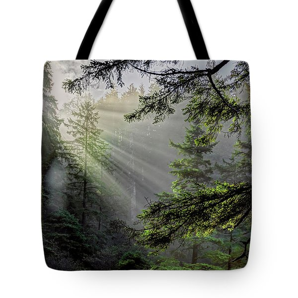 Morning Rays Through An Oregon Rain Forest Tote Bag