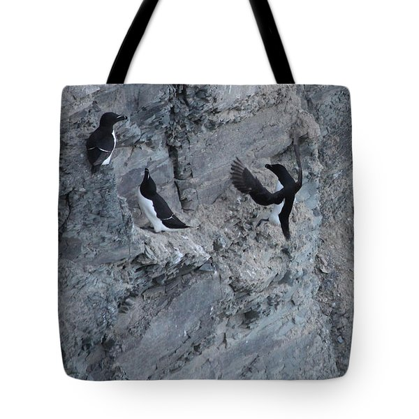 Razorbill Landing Tote Bag by John Meader