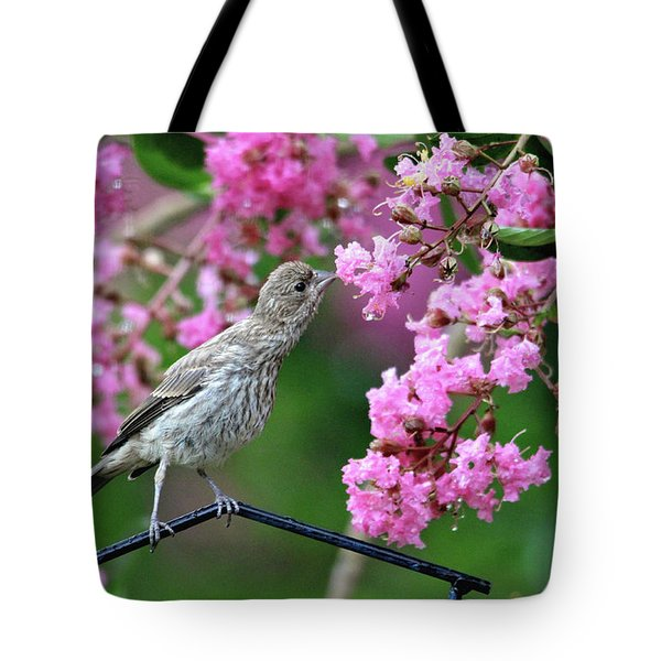 Reach For It Tote Bag