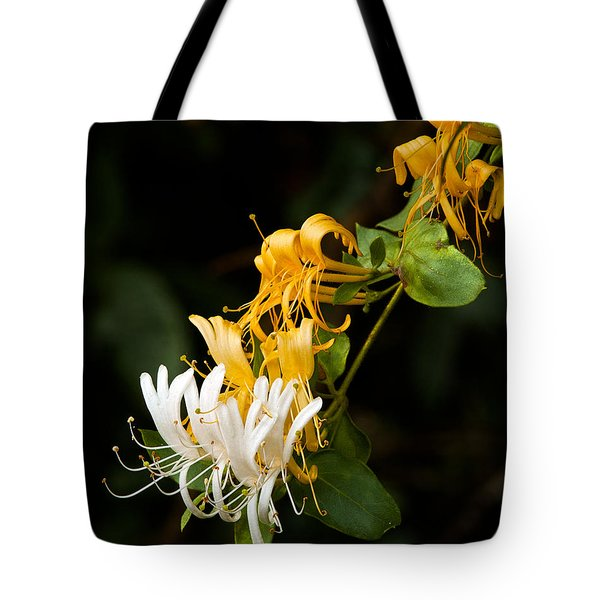 Reaching Tote Bag by Christopher Holmes