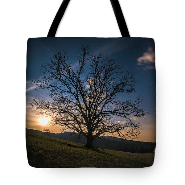 Reaching For The Moon Tote Bag by Robert Loe