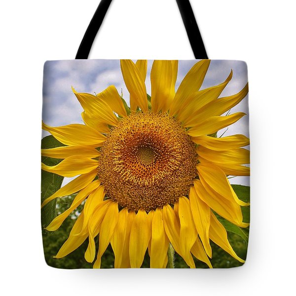 Reaching For The Sky Tote Bag by Bruce Bley