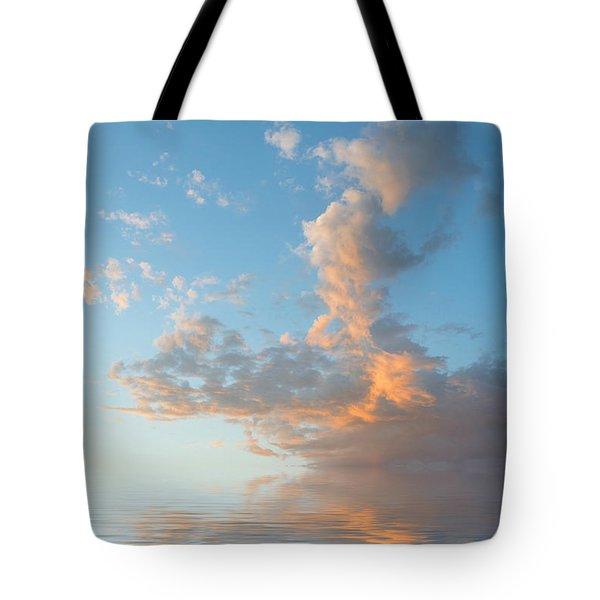 Reaching High Tote Bag by Jerry McElroy