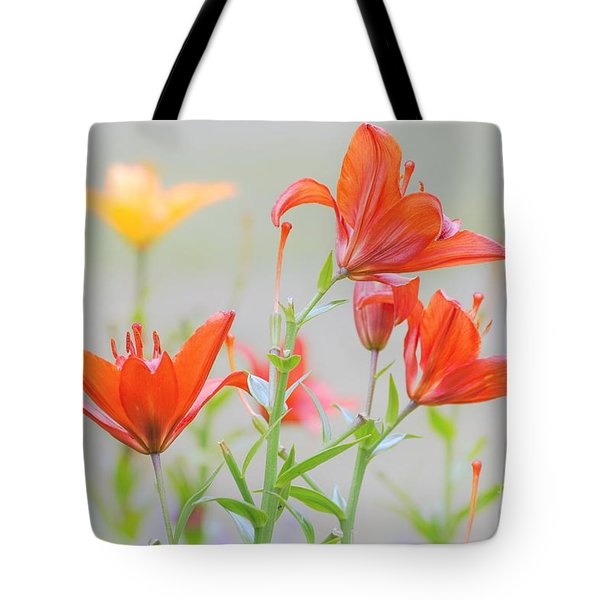 Reaching Higher Tote Bag