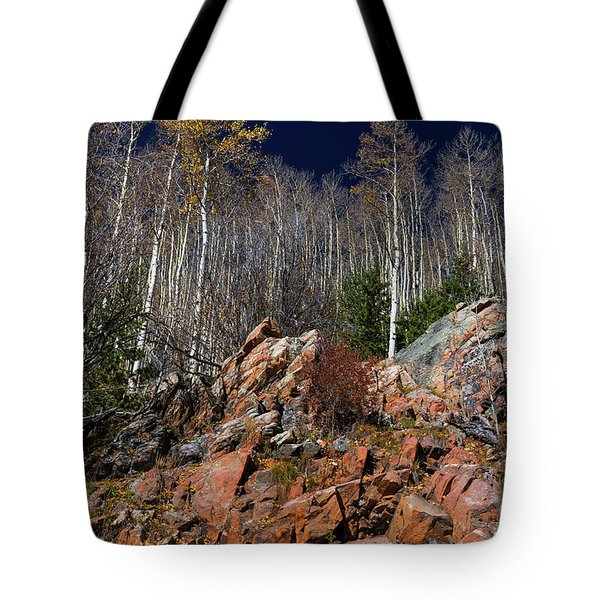 Reaching Into Blue Tote Bag by Stephen Anderson