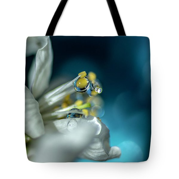 Reaching Into The Blue Tote Bag