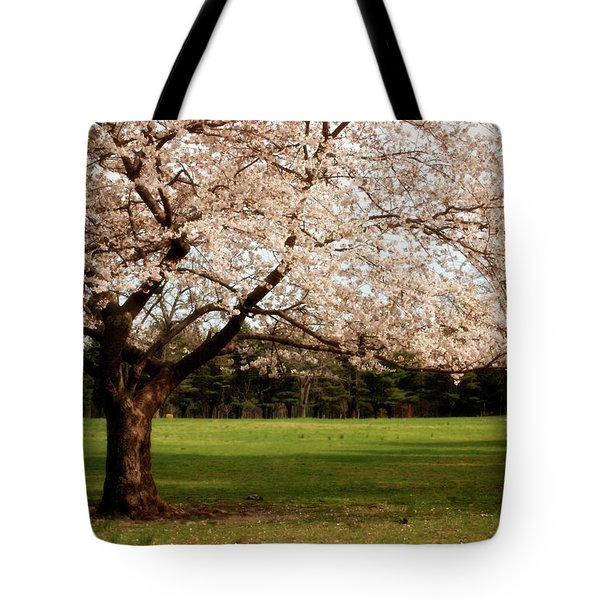 Reaching Out - Ocean County Park Tote Bag by Angie Tirado