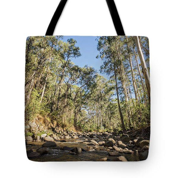 Tote Bag featuring the photograph Reaching Skyward by Linda Lees
