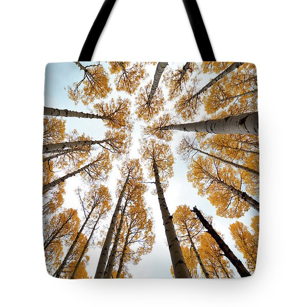 Reaching The Sky Tote Bag