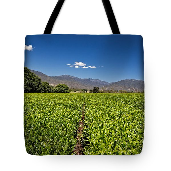 Ready For Harvest Tote Bag by Mark Lucey