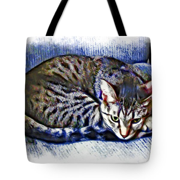 Ready For Napping Tote Bag by David G Paul