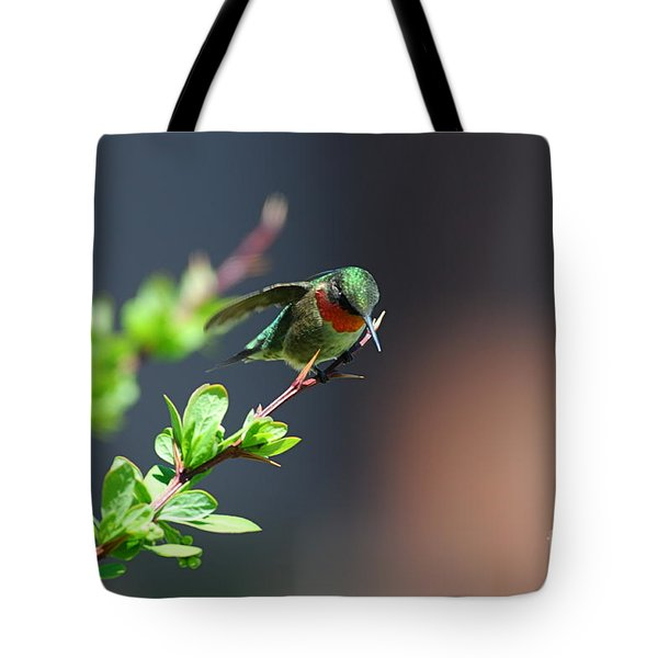 Tote Bag featuring the photograph Ready For Take-off by Sandra Updyke