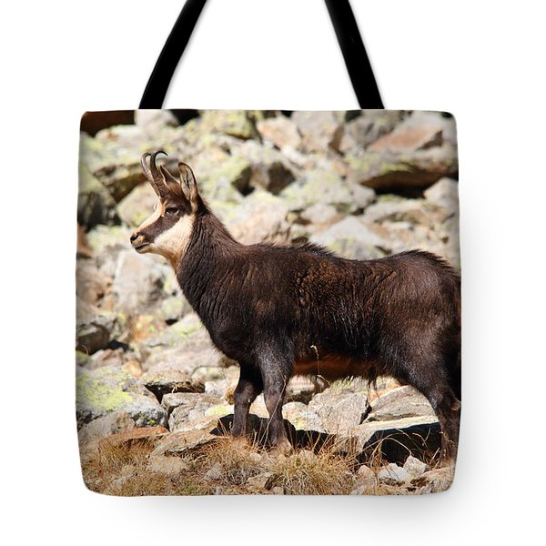 Tote Bag featuring the photograph Ready For The Challenge by Richard Patmore