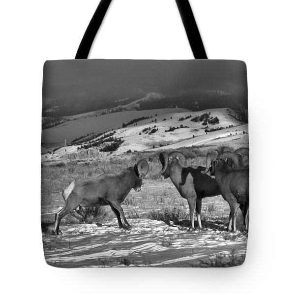 Ready To Brawl In Wyoming Tote Bag